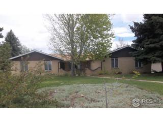 2610 51st Ave, Greeley, CO 80634 (MLS #821427) :: Downtown Real Estate Partners