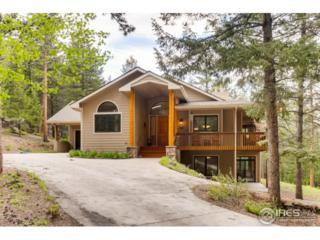 1201 Hondius Ln, Estes Park, CO 80517 (MLS #821468) :: 8z Real Estate