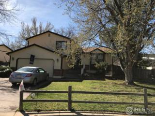 1026 E 6th Cir, Broomfield, CO 80020 (MLS #821477) :: 8z Real Estate