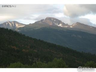 1565 Colorado Hwy 66 #4; #47, Estes Park, CO 80517 (MLS #821497) :: 8z Real Estate