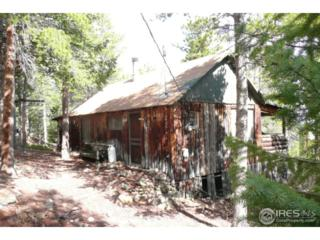 144 Wonder Trail, Golden, CO 80403 (MLS #821523) :: Downtown Real Estate Partners