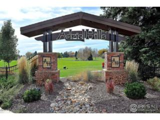 1537 Adriel Ct, Fort Collins, CO 80524 (MLS #821524) :: Downtown Real Estate Partners