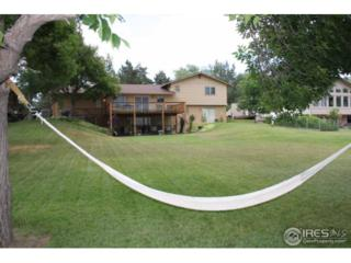 706 W 29th St, Loveland, CO 80538 (MLS #821525) :: Downtown Real Estate Partners