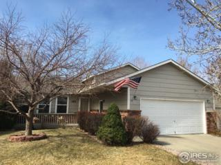 161 50th Ave Pl, Greeley, CO 80634 (#813329) :: The Peak Properties Group