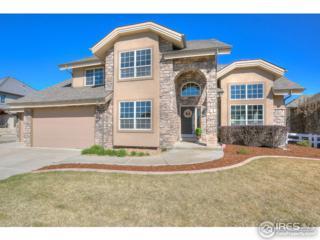312 Habitat Cv, Windsor, CO 80550 (MLS #816170) :: 8z Real Estate