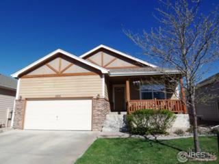 1406 Windjammer Dr, Windsor, CO 80550 (MLS #817167) :: 8z Real Estate