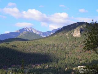 175 Curry Dr, Estes Park, CO 80517 (MLS #817835) :: 8z Real Estate