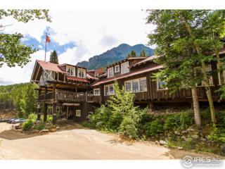 4900 Highway 7, Estes Park, CO 80517 (MLS #820495) :: 8z Real Estate