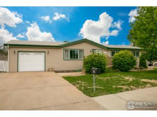 1216 30th St Rd, Greeley, CO 80631 (MLS #820774) :: 8z Real Estate