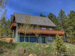 35 Sundown Trl, Nederland, CO 80466 (MLS #820794) :: 8z Real Estate