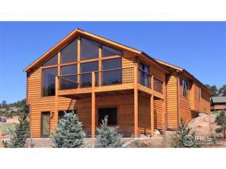 684 Moreau Ln, Estes Park, CO 80517 (MLS #821480) :: 8z Real Estate