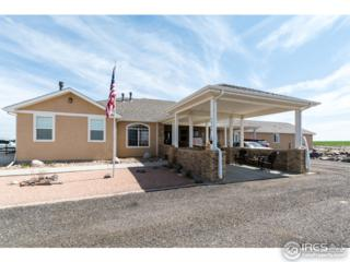 6994 County Road 39, Fort Lupton, CO 80621 (MLS #817170) :: 8z Real Estate
