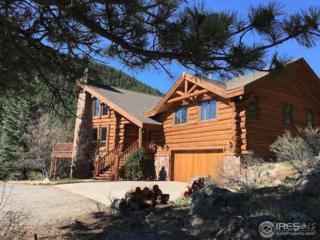 5005 Colard Ln, Lyons, CO 80540 (MLS #816250) :: 8z Real Estate