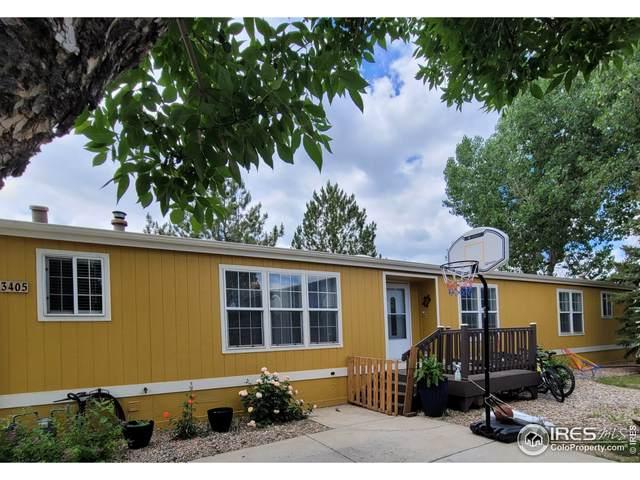 3405 Forest Cyn #216, Longmont, CO 80504 (MLS #4751) :: Wheelhouse Realty