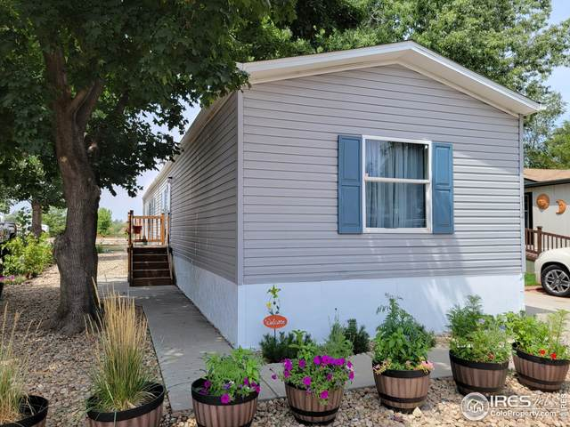 200 N 35th Ave #112, Greeley, CO 80634 (MLS #4791) :: Bliss Realty Group