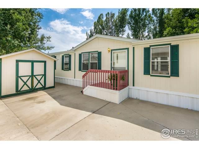 1210 Limestone Ave #101, Loveland, CO 80537 (MLS #4881) :: Sears Real Estate