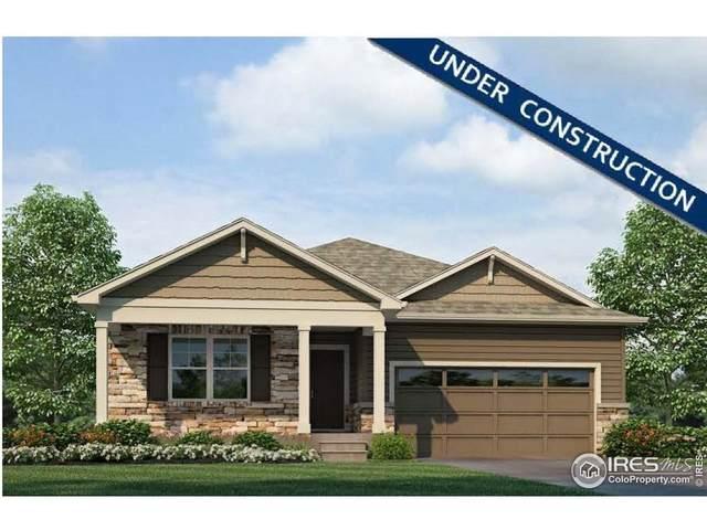 4507 Kingswood Dr, Windsor, CO 80550 (MLS #943826) :: Jenn Porter Group