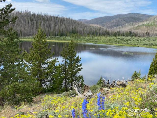 292 Jackson County Road 3, Walden, CO 80480 (MLS #944125) :: RE/MAX Alliance