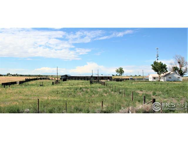 18549 County Road 27, Brush, CO 80723 (#944659) :: Re/Max Structure