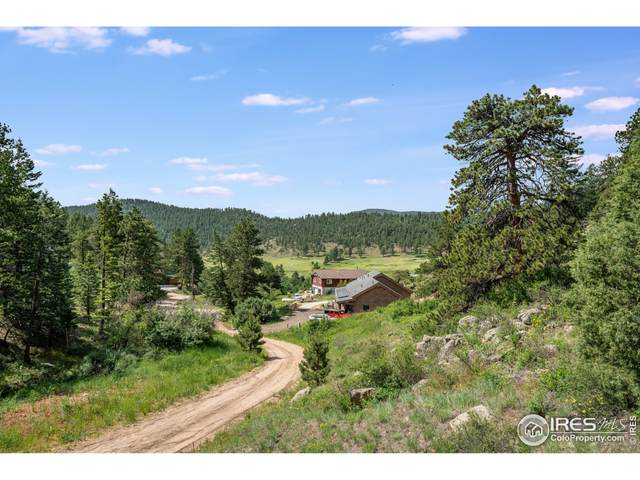 0 Pine Tree Dr, Estes Park, CO 80517 (MLS #944685) :: Bliss Realty Group