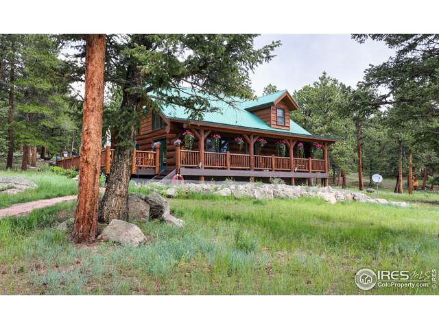 54 Lynx Dr, Ward, CO 80481 (MLS #944687) :: J2 Real Estate Group at Remax Alliance