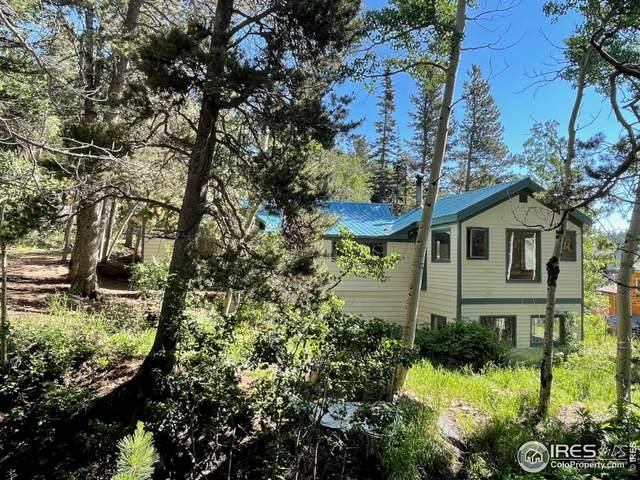 10 Modoc St, Ward, CO 80481 (MLS #944782) :: Find Colorado