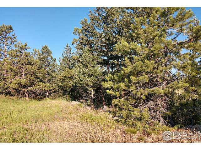 466 Cucharas Mountain Dr, Livermore, CO 80536 (MLS #945083) :: Kittle Real Estate