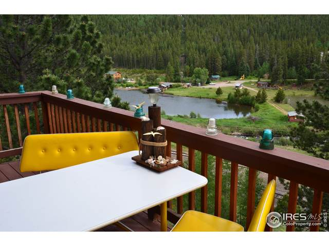 244 Assay Office Rd, Rollinsville, CO 80474 (MLS #945283) :: J2 Real Estate Group at Remax Alliance