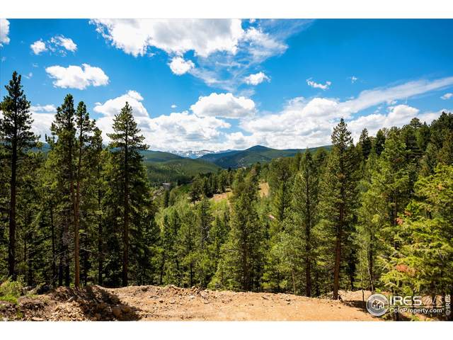 Tbd Arts Ln, Rollinsville, CO 80474 (MLS #945844) :: J2 Real Estate Group at Remax Alliance