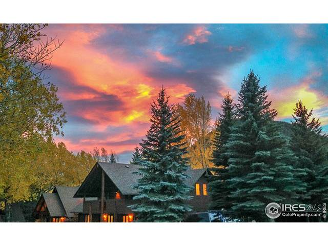 1565 Highway 66 #24, Estes Park, CO 80517 (MLS #945877) :: Bliss Realty Group