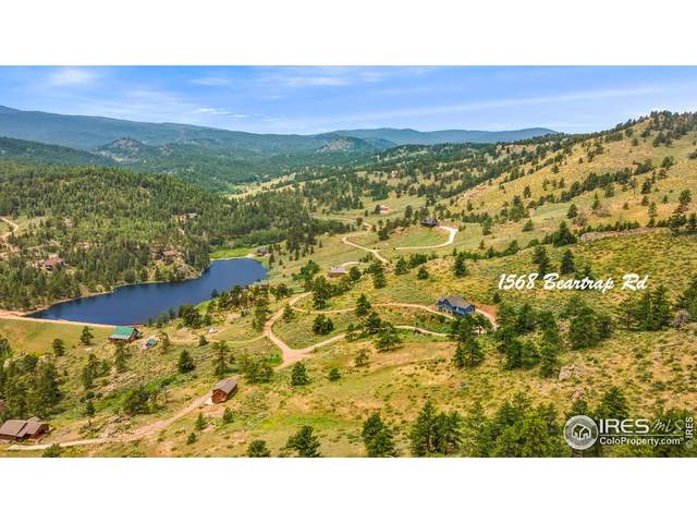 1568 Beartrap Rd, Red Feather Lakes, CO 80545 (MLS #945881) :: Jenn Porter Group