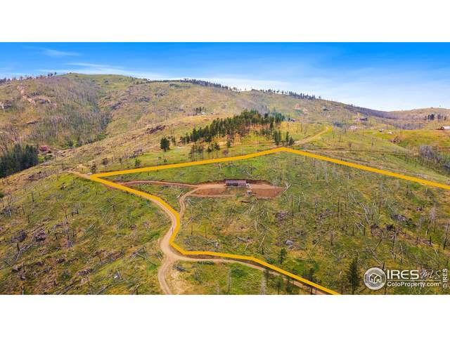 515 Little Whale Rd, Bellvue, CO 80512 (MLS #946159) :: Downtown Real Estate Partners