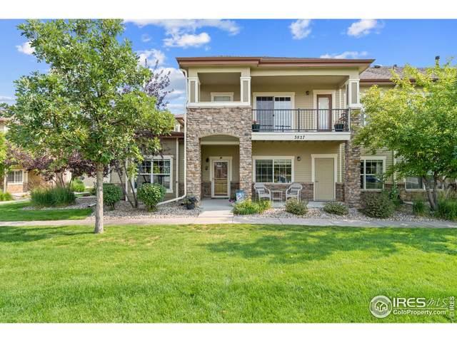 3827 Steelhead St D, Fort Collins, CO 80528 (MLS #946357) :: Find Colorado