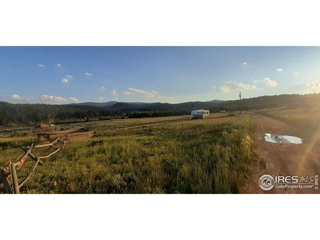 32 Cochiti Cir, Red Feather Lakes, CO 80545 (MLS #946385) :: J2 Real Estate Group at Remax Alliance
