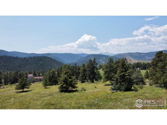 0 Storm Mountain Rd, Drake, CO 80515 (MLS #946389) :: J2 Real Estate Group at Remax Alliance
