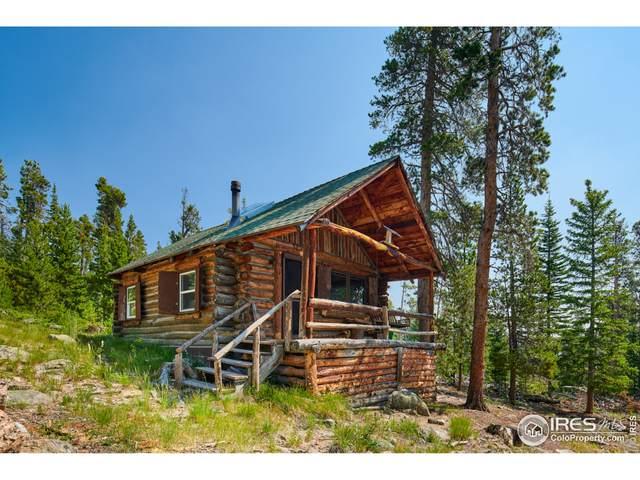 3106 County Road 96J, Ward, CO 80481 (#946709) :: iHomes Colorado