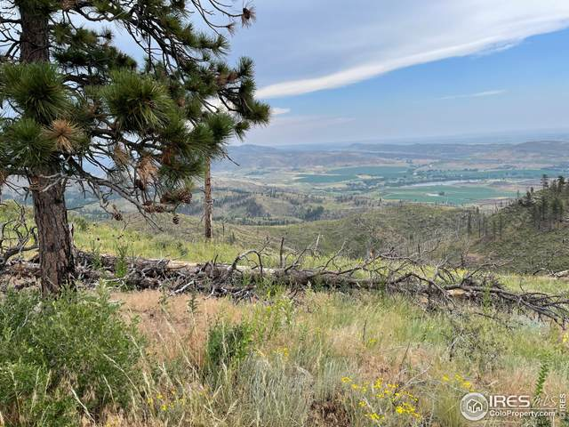 776 Pine Acres Way, Bellvue, CO 80512 (#946818) :: Re/Max Structure
