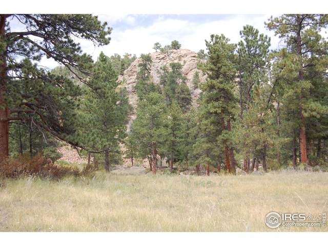 0 Green Pine Ct, Estes Park, CO 80517 (#946863) :: Symbio Denver