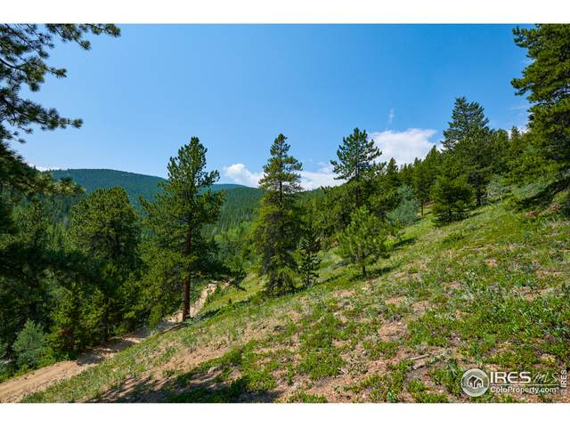 0 Gamble Gulch Rd, Black Hawk, CO 80422 (#947036) :: iHomes Colorado