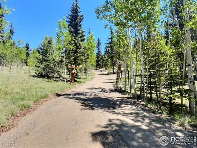 268 Chippewa Rd, Como, CO 80432 (MLS #947098) :: J2 Real Estate Group at Remax Alliance