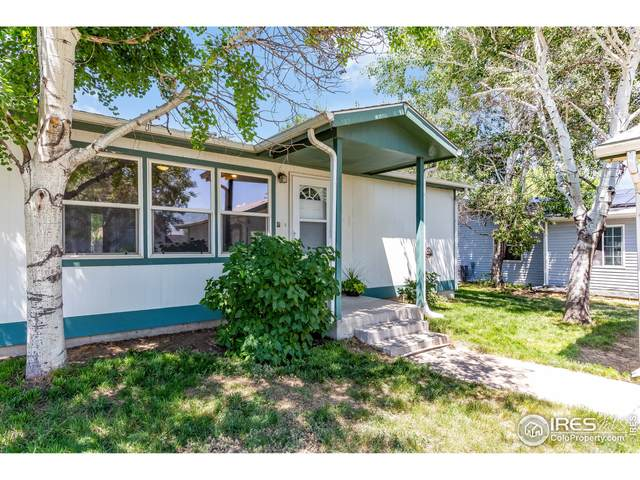 3441 35th St, Greeley, CO 80634 (MLS #947214) :: Tracy's Team