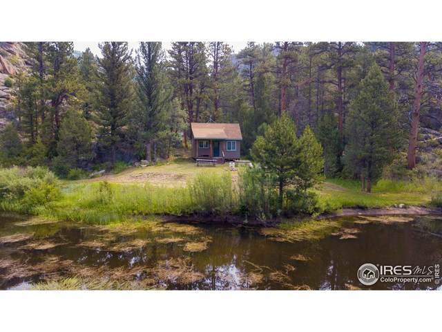 1200 Bull Creek Pass Rd, Livermore, CO 80536 (#947557) :: James Crocker Team