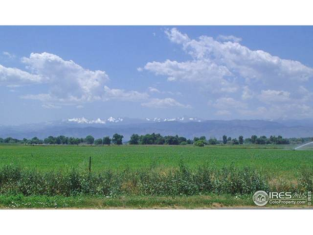 850 Chiricahua Cir, Red Feather Lakes, CO 80545 (MLS #947719) :: Tracy's Team