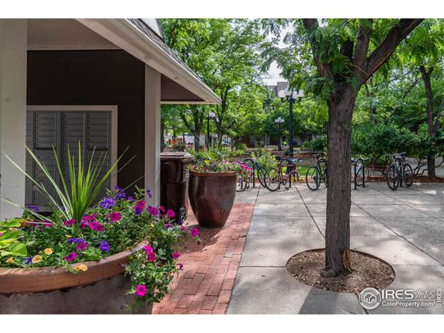 2201 Pearl St #216, Boulder, CO 80302 (MLS #947747) :: Find Colorado