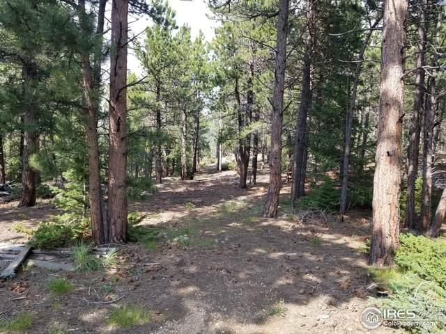 54 Carson Ct, Ward, CO 80481 (#947764) :: Symbio Denver