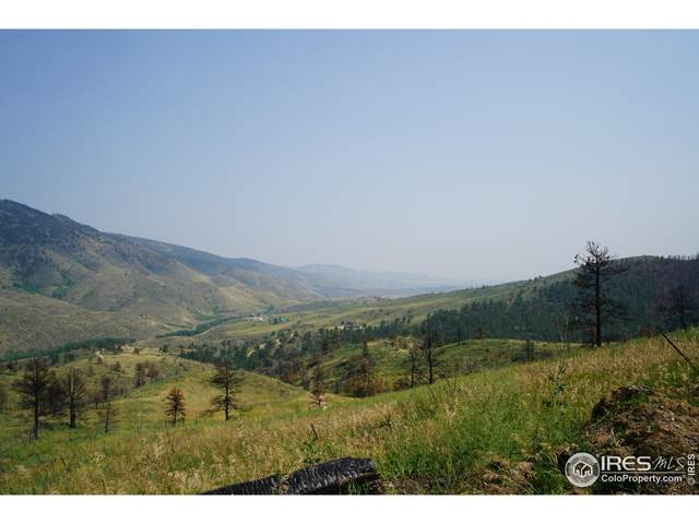 957 Stringtown Gulch Rd, Bellvue, CO 80512 (MLS #947961) :: Downtown Real Estate Partners