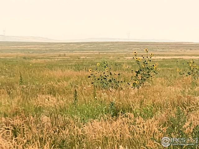 County Road 21, Carr, CO 80612 (MLS #948034) :: J2 Real Estate Group at Remax Alliance