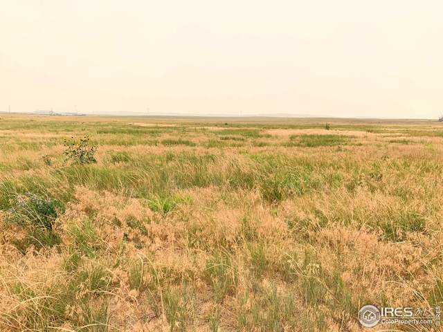County Road 21, Carr, CO 80612 (MLS #948035) :: Downtown Real Estate Partners