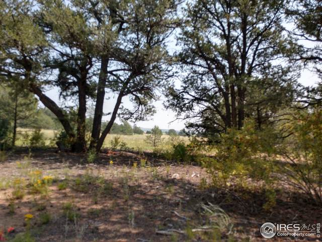 0 Ne Corner M Path & 16th Trl, Cotopaxi, CO 81223 (MLS #948069) :: Find Colorado