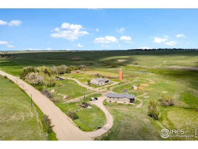 30048 Maul Rd, Kiowa, CO 80117 (MLS #948071) :: Downtown Real Estate Partners
